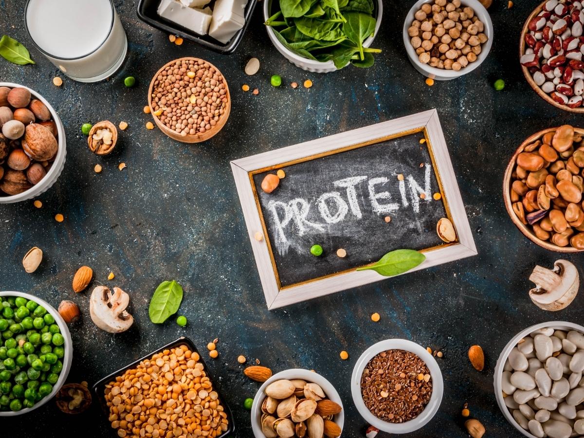 Amaël MALLEMONT Pôle Santé les Pléiades protéine végétale Protéines végétales